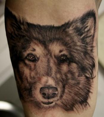 tetování přítel psí styl