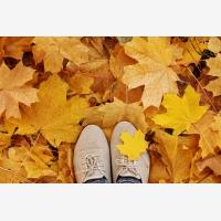 Miluju, jak mi spadané listí křupe pod nohama