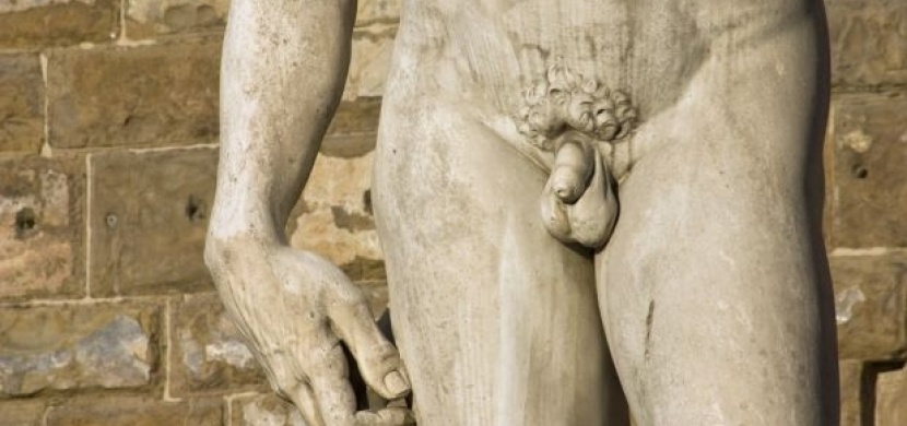 Fotografie mužského penisu