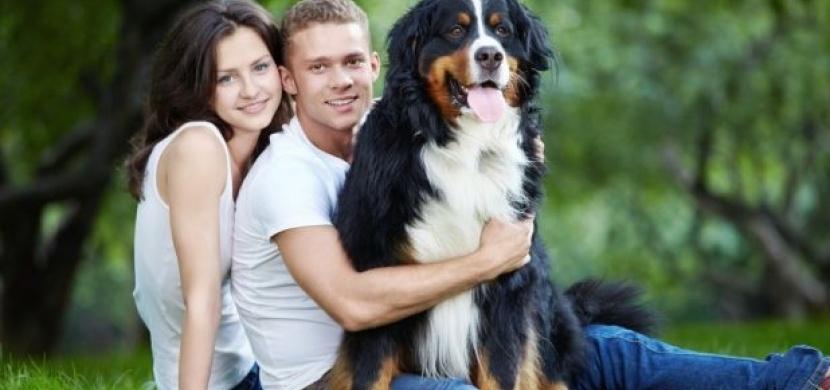 Pes místo dítěte? Dnes běžné partnerské soužití