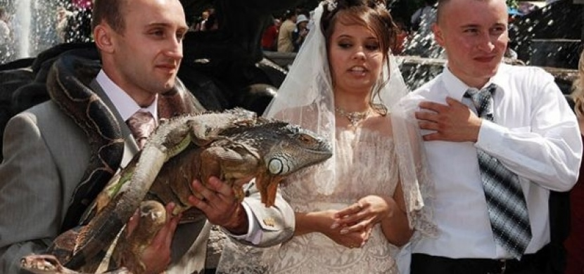 Svatební fotky, které se totálně nepovedly. Budete se řezat smíchy!