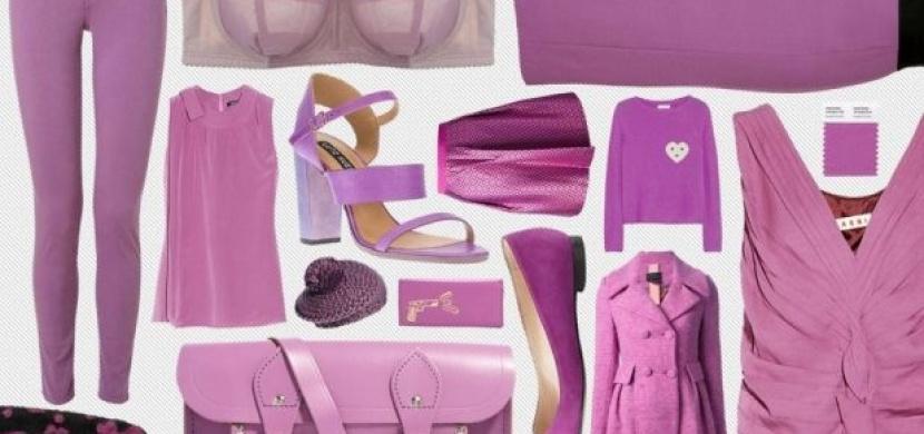 Fialovorůžová: Barva orchideje jako nový módní trend