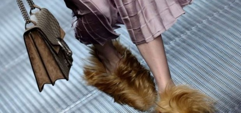 To musíte vidět! Chlupaté boty dobývají svět!