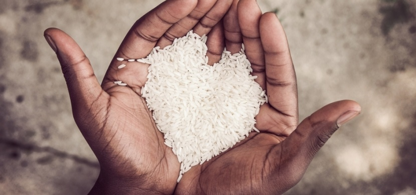 Jak připravit opravdu výbornou rýži?