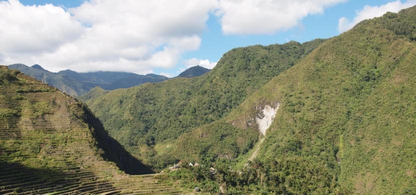 Filipíny: Na rýžových polích