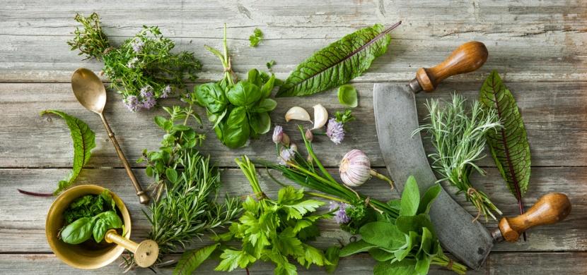 Lexikon koření a bylinek: tipy pro používání