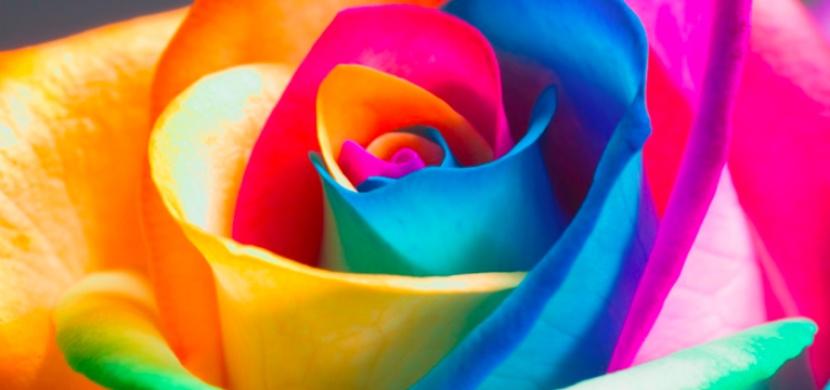 Co o vaší osobnosti prozradí vaše oblíbená barva? Budete koukat!
