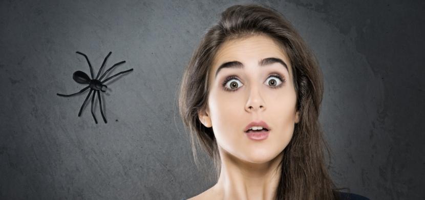 Bojíte se pavouků? Zbavte se své fobie díky jednoduchému triku!