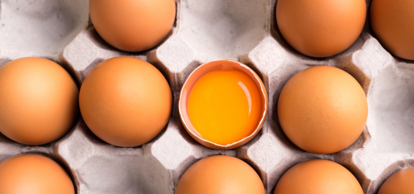 Jak poznat na vejci, že jej snesla zdravá slepice? Zaměřte se na tuhle věc