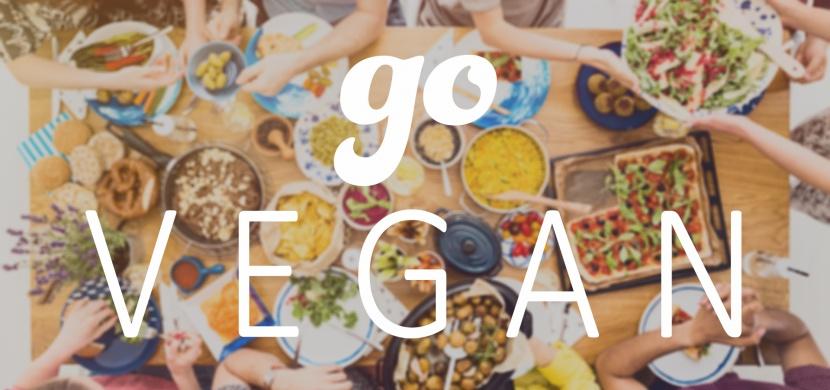 Jak začít s veganstvím bez stresu a strádání