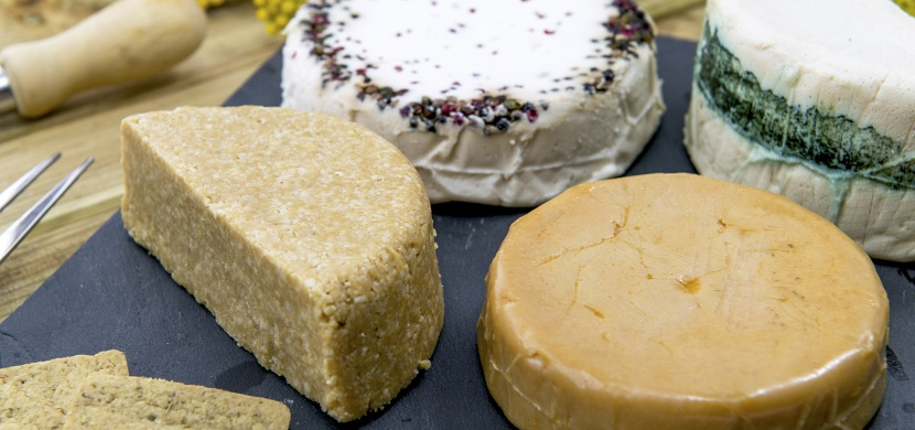 Go vegan: Jak nahradit mléko a mléčné výrobky