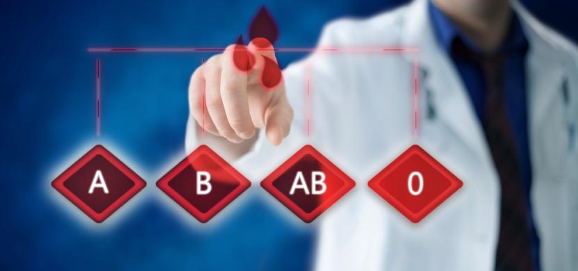 Krevní skupina - co byste o ní měli vědět a s čím vším souvisí?