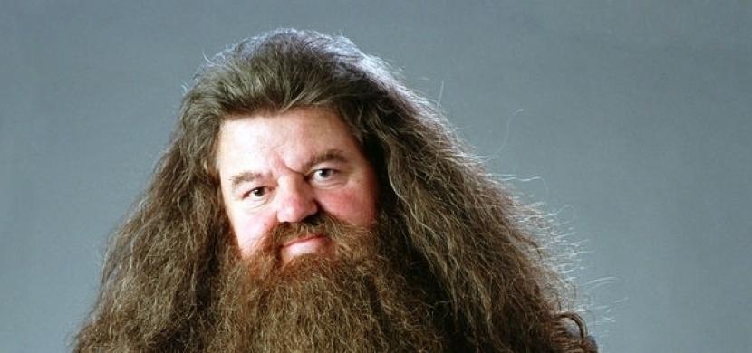 Jak vypadá Hagrid z Harryho Pottera dnes? Asi byste ho nepoznali
