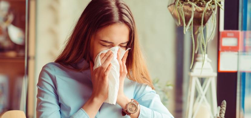 Alergie na roztoče - jak jejich výskyt eliminovat a co nedělat?