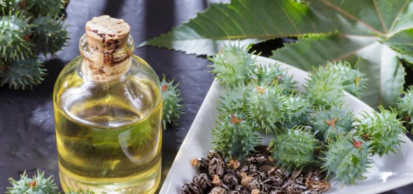 Přírodní všeuměl: ricinový olej