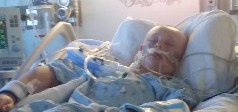 Jejich syn se probudil z kómatu ve chvíli, kdy rodiče podepisovali smlouvu o dárcovství orgánů