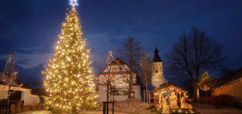 ČEZ o Vánocích rozsvítí stovky stromů. Navštivte jedno z měst a užijte si předvánoční pohodu