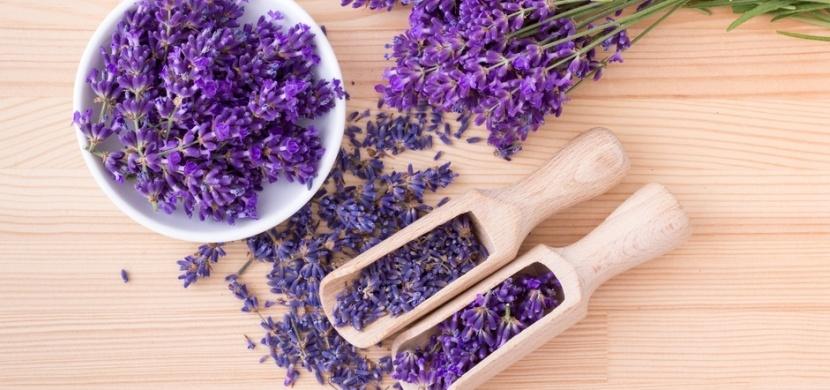 Co všechno si můžete vyrobit z levandule? Vyzkoušejte levandulový sirup, olej či paličky, které vám připomenou dalekou Provence