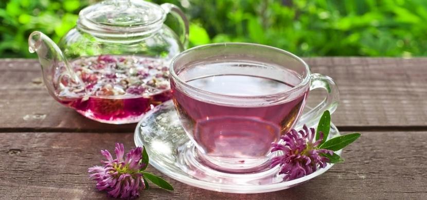Červený jetel je zázračnou bylinkou pro ženy v menopauze: Potlačuje návaly horka a zlepšuje náladu