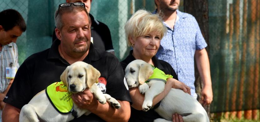 Projekt Tlapka v dlani: Výchova budoucích vodicích psů vězni ve výkonu trestu