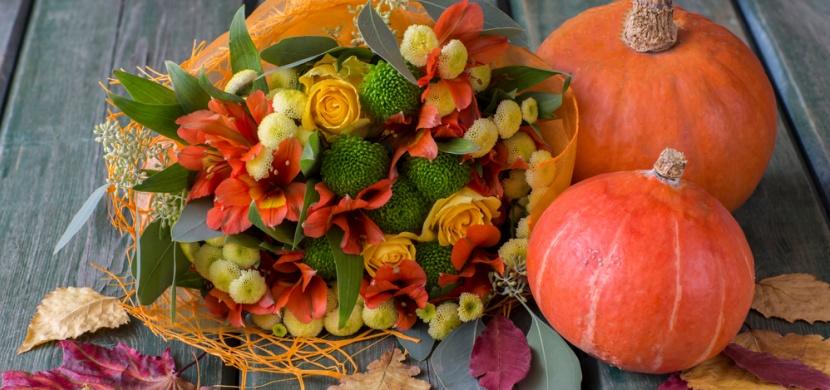 Dýňový květináč s živými rostlinami: Kombinace, která baví