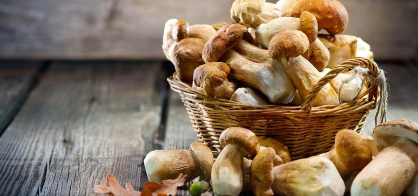 Jak zpracovat houby? Sušte, mrazte i nakládejte
