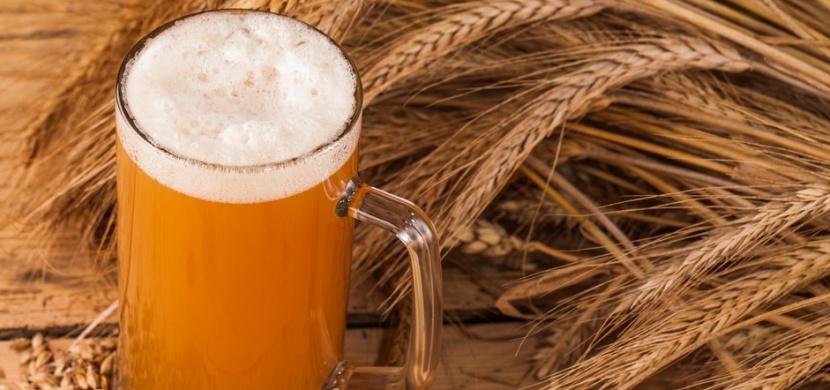 Jak využít pivo jinak než k pití? Pomůže vám v domácnosti, na zahradě i v péči o krásu