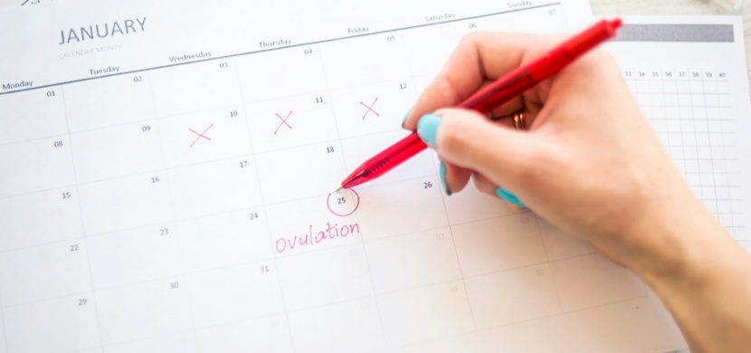Jak poznat ovulaci: Sledujte řeč svého těla, které vám odhalí vaše plodné dny