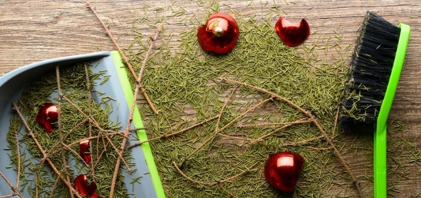 Co s živým vánočním stromkem, který dosloužil: Vyrobte z něj ptačí krmítko nebo jej zaneste do zoo