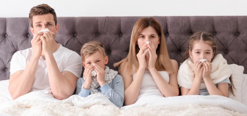 Jak nejlépe vyléčit chřipku: Nemoc pořádně vyležte, dejte si kuřecí vývar a vsaďte na bylinky