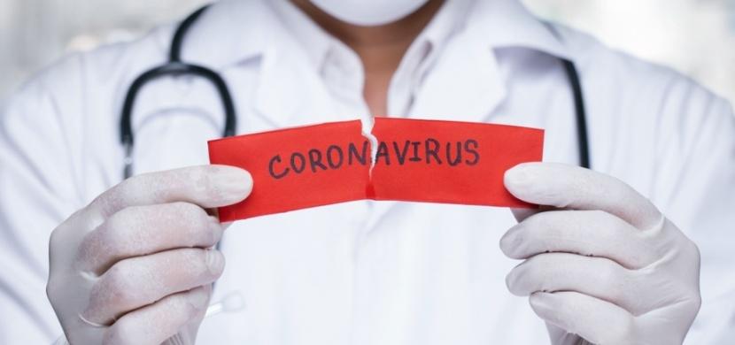 Co pomáhá proti koronaviru: Obraťte se na bylinky a přírodní prostředky, které působí jako silná antivirotika