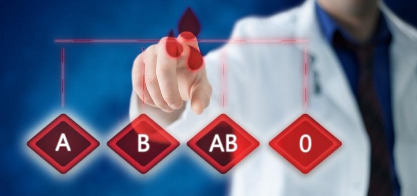 O náchylnosti ke koronaviru rozhoduje krevní skupina: Zranitelnější jsou lidé s typem A, odolnější pak majitelé krevní skupiny 0