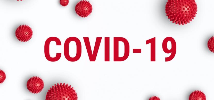 Mýty o novém typu koronaviru. Nevznikl v laboratoři ani jej nepřenáší psi