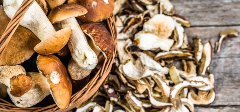 Jak správně sušit houby? Aby vám nezplesnivěly, vyzkoušejte triky našich babiček