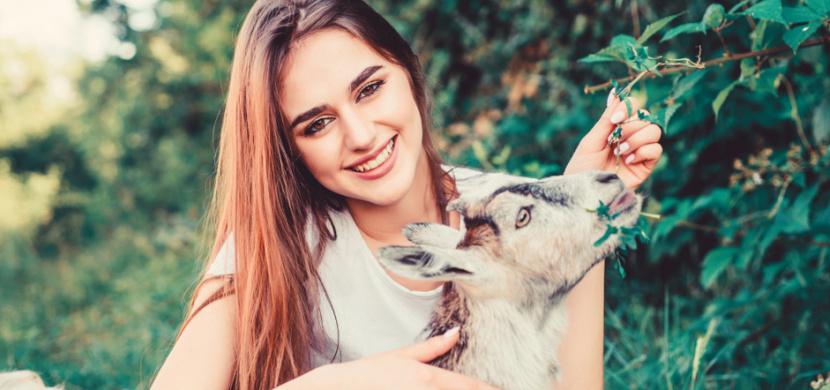 Britská farmářka půjčuje své kozy na videokonference. Z původního vtipu se stal velký byznys