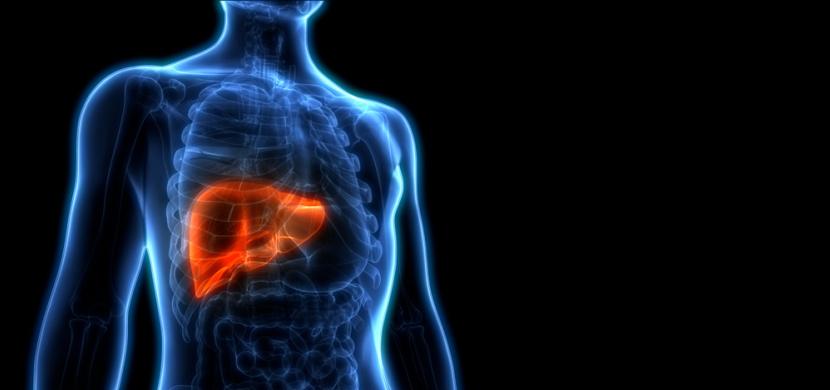 Symptomy, které signalizují onemocnění či poškození jater