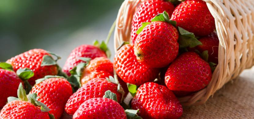 Kdy vysadit jahody, abyste se těšili z bohaté úrody: Ideálně v dubnu nebo květnu