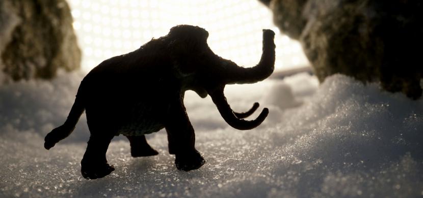 Když led vydává svá tajemství: Co vše objevili vědci pohřbené pod ledem?